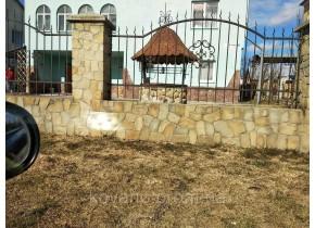 Забор кованый Лотос